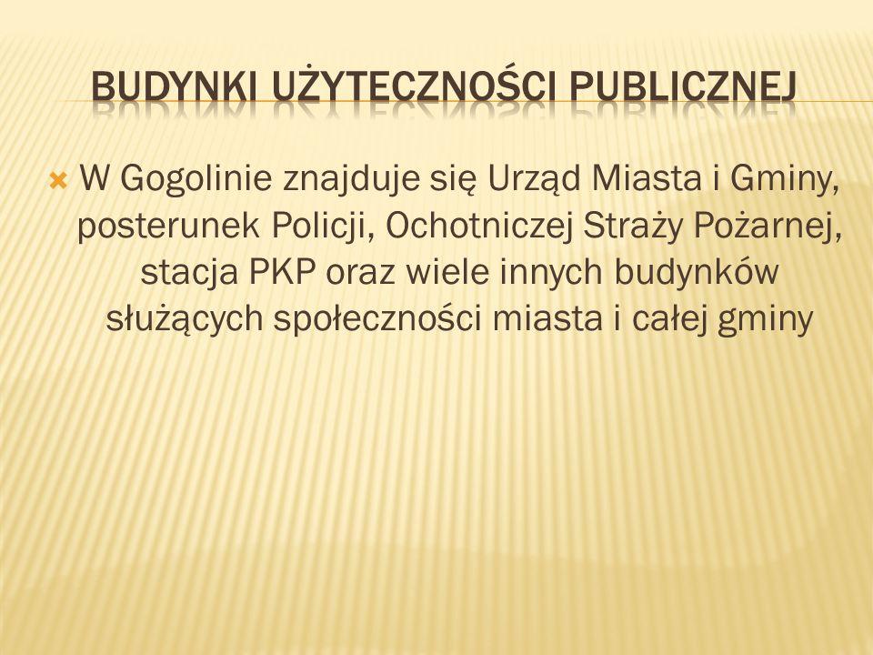 W Gogolinie znajduje się Urząd Miasta i Gminy, posterunek Policji, Ochotniczej Straży Pożarnej, stacja PKP oraz wiele innych budynków służących społeczności miasta i całej gminy