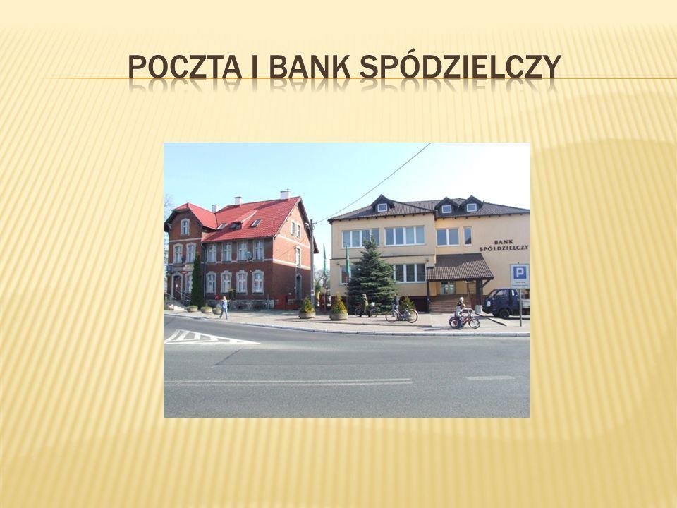 Na terenie Gogolina znajduje się Liceum Ogólnokształcące i Publiczne Gimnazjum w jednym budynku, dwie szkoły podstawowe oraz trzy przedszkola.