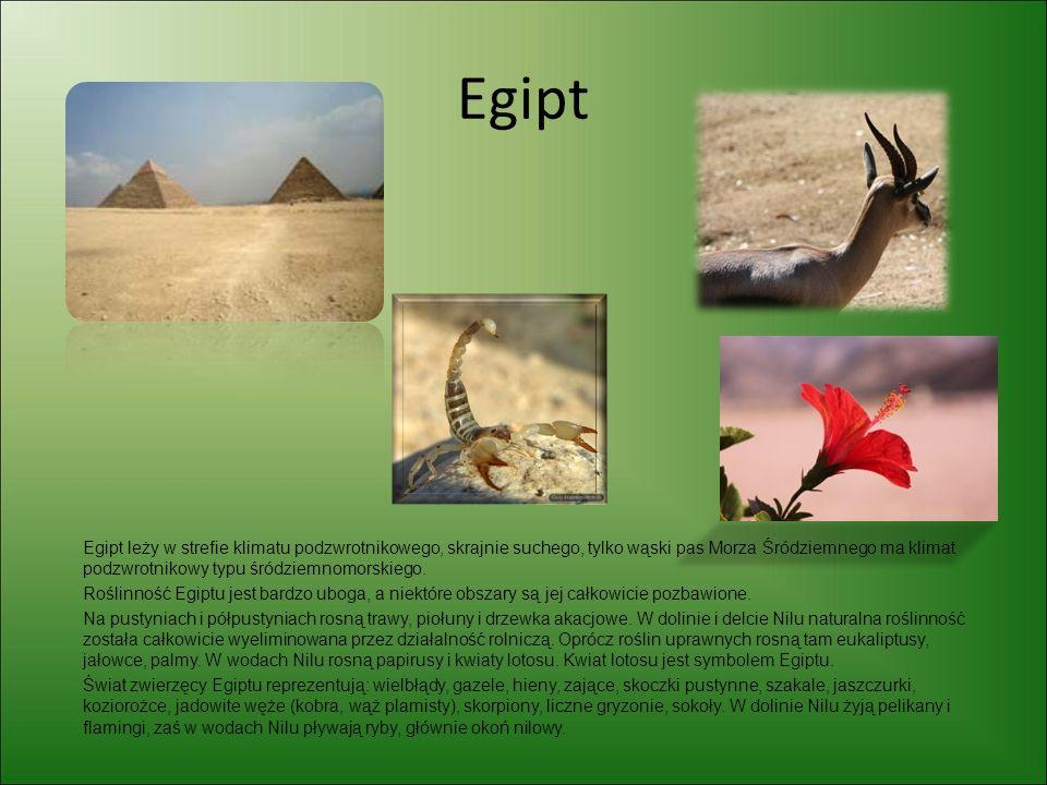 Egipt Egipt leży w strefie klimatu podzwrotnikowego, skrajnie suchego, tylko wąski pas Morza Śródziemnego ma klimat podzwrotnikowy typu śródziemnomors