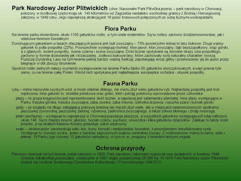 Park Narodowy Jezior Plitwickich (chor. Nacionalni Park Plitvička jezera) – park narodowy w Chorwacji, położony w środkowej części kraju ok. 140 kilom