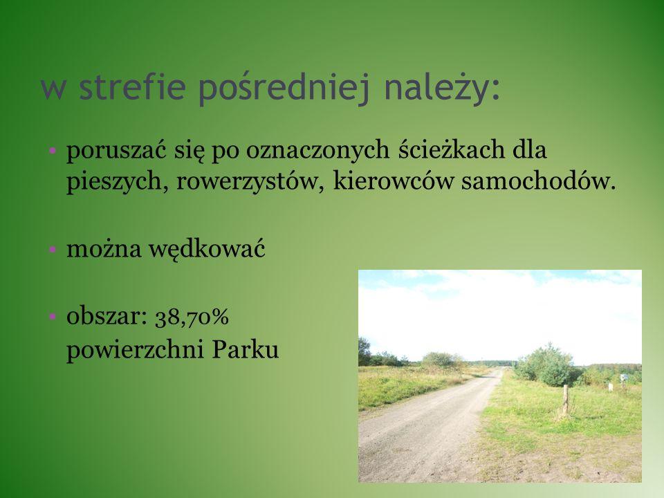 w strefie pośredniej należy: poruszać się po oznaczonych ścieżkach dla pieszych, rowerzystów, kierowców samochodów. można wędkować obszar: 38,70% powi
