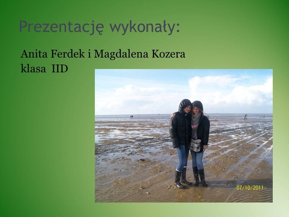 Prezentację wykonały: Anita Ferdek i Magdalena Kozera klasa IID