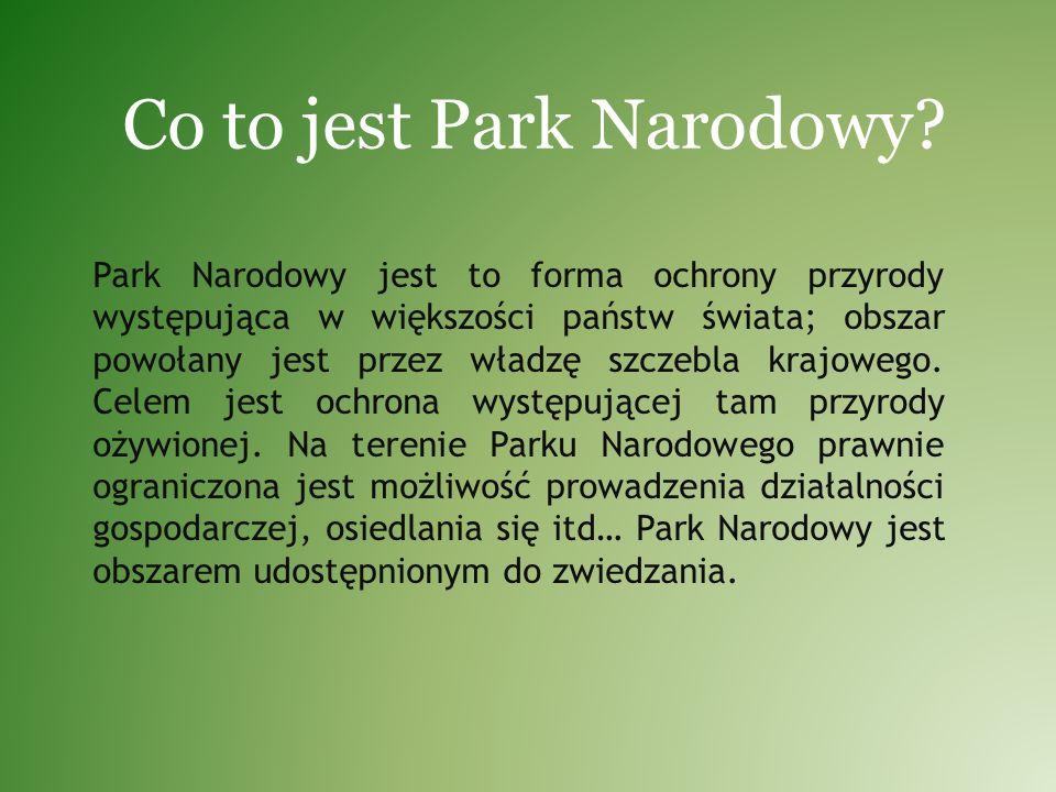 Co to jest Park Narodowy? Park Narodowy jest to forma ochrony przyrody występująca w większości państw świata; obszar powołany jest przez władzę szcze