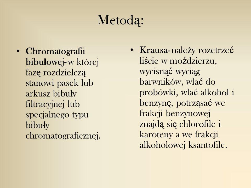 Metod ą : Chromatografii bibu ł owej- w której faz ę rozdzielcz ą stanowi pasek lub arkusz bibu ł y filtracyjnej lub specjalnego typu bibu ł y chromatograficznej.