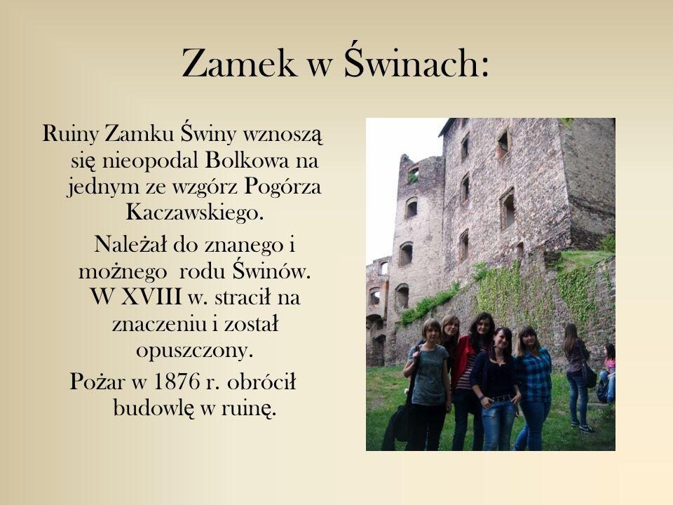 Zamek w Ś winach : Ruiny Zamku Ś winy wznosz ą si ę nieopodal Bolkowa na jednym ze wzgórz Pogórza Kaczawskiego.