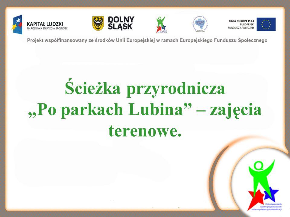 Ścieżka przyrodnicza Po parkach Lubina – zajęcia terenowe.