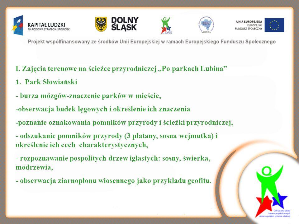 I. Zajęcia terenowe na ścieżce przyrodniczej,,Po parkach Lubina 1. Park Słowiański - burza mózgów-znaczenie parków w mieście, -obserwacja budek lęgowy