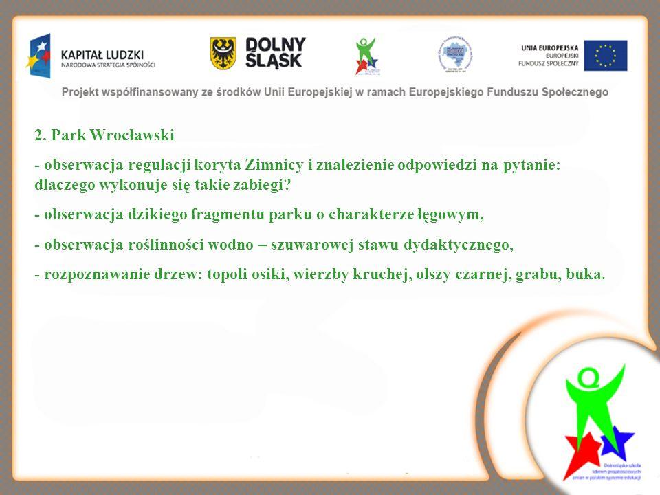 2. Park Wrocławski - obserwacja regulacji koryta Zimnicy i znalezienie odpowiedzi na pytanie: dlaczego wykonuje się takie zabiegi? - obserwacja dzikie