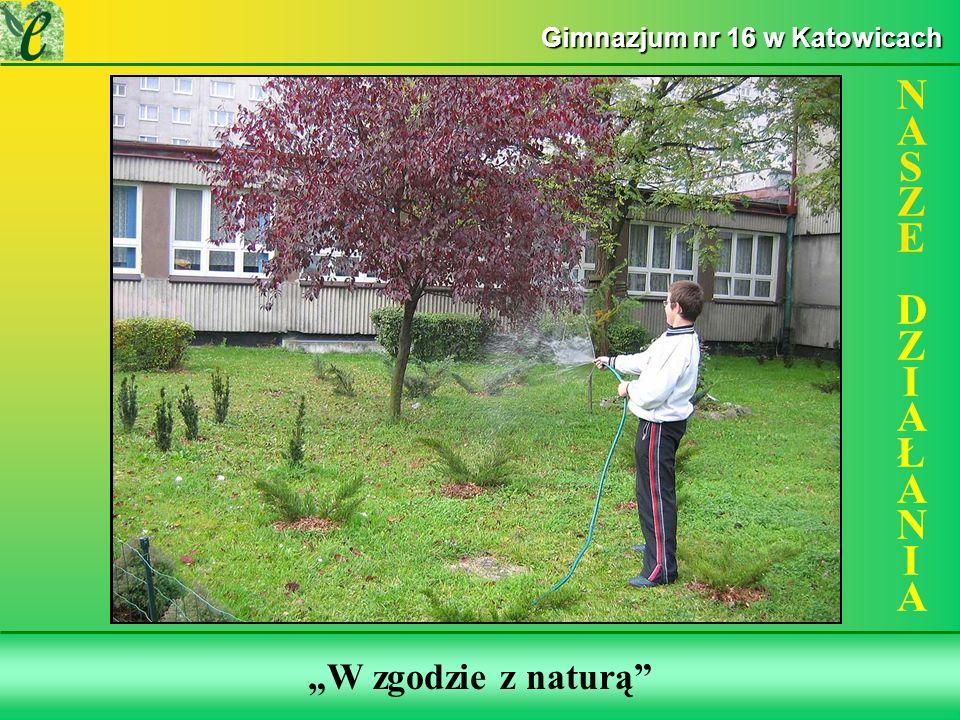 Wybrane działania w ramach zdobywania Zielonego Certyfikatu W zgodzie z naturą NASZE DZIAŁANIANASZE DZIAŁANIA Gimnazjum nr 16 w Katowicach