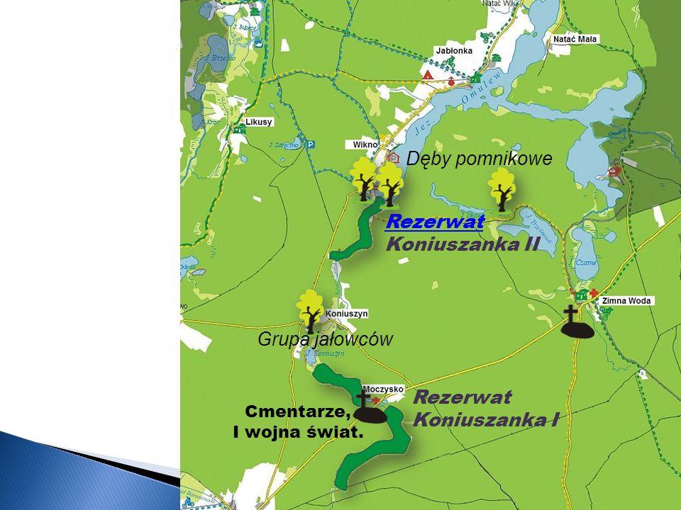 Rezerwat Koniuszanka II Rezerwat Koniuszanka I Cmentarze, I wojna świat.