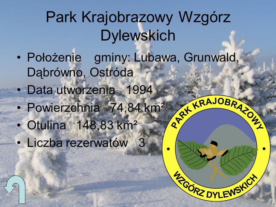 Park Krajobrazowy Wzgórz Dylewskich Położenie gminy: Lubawa, Grunwald, Dąbrówno, Ostróda Data utworzenia 1994 Powierzchnia 74,84 km² Otulina 148,83 km