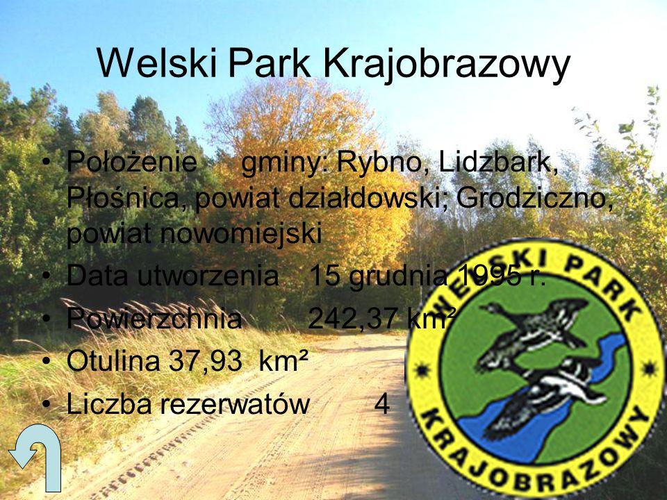 Położeniegminy: Rybno, Lidzbark, Płośnica, powiat działdowski; Grodziczno, powiat nowomiejski Data utworzenia15 grudnia 1995 r. Powierzchnia242,37 km²