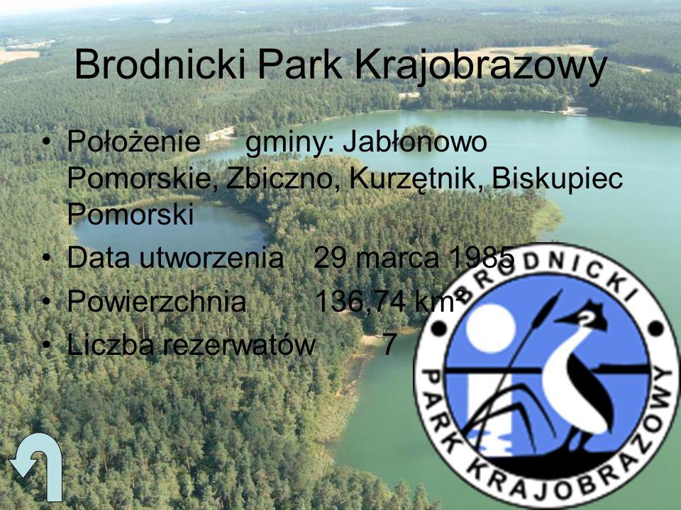 Brodnicki Park Krajobrazowy Położeniegminy: Jabłonowo Pomorskie, Zbiczno, Kurzętnik, Biskupiec Pomorski Data utworzenia29 marca 1985 Powierzchnia136,7