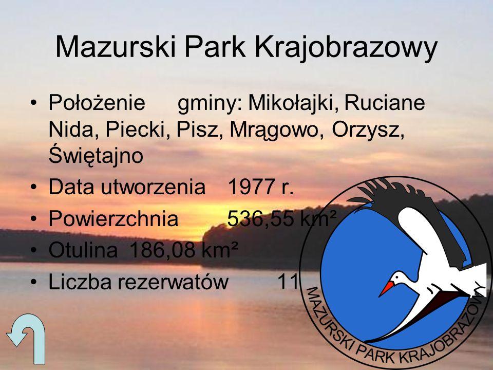 Mazurski Park Krajobrazowy Położeniegminy: Mikołajki, Ruciane Nida, Piecki, Pisz, Mrągowo, Orzysz, Świętajno Data utworzenia1977 r. Powierzchnia536,55