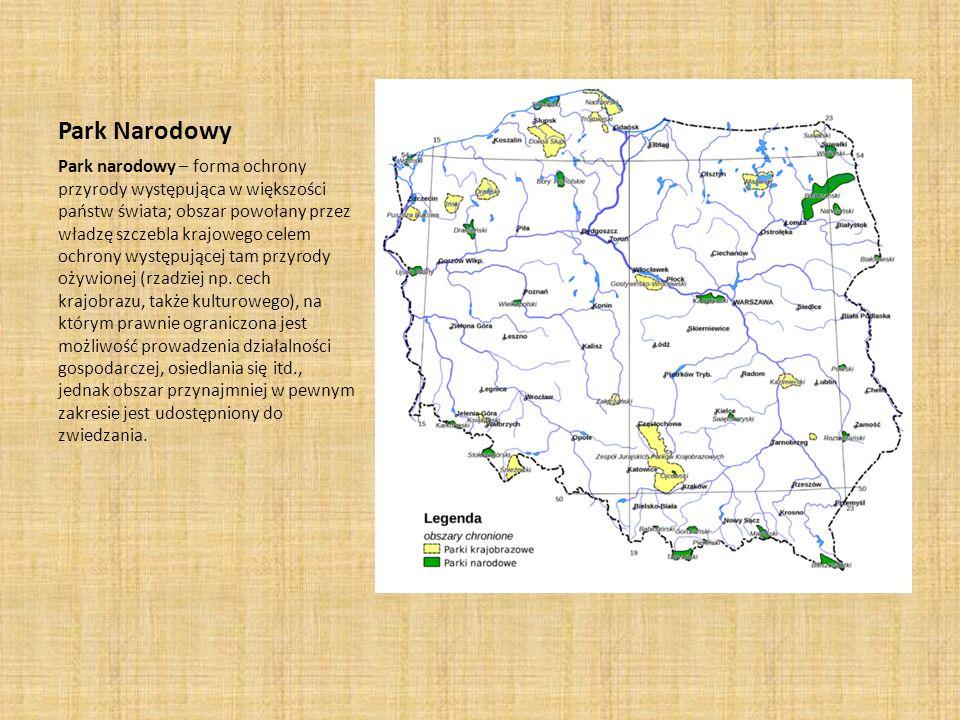 Park Narodowy Park narodowy – forma ochrony przyrody występująca w większości państw świata; obszar powołany przez władzę szczebla krajowego celem och