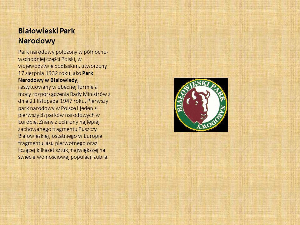 Białowieski Park Narodowy Park narodowy położony w północno- wschodniej części Polski, w województwie podlaskim, utworzony 17 sierpnia 1932 roku jako