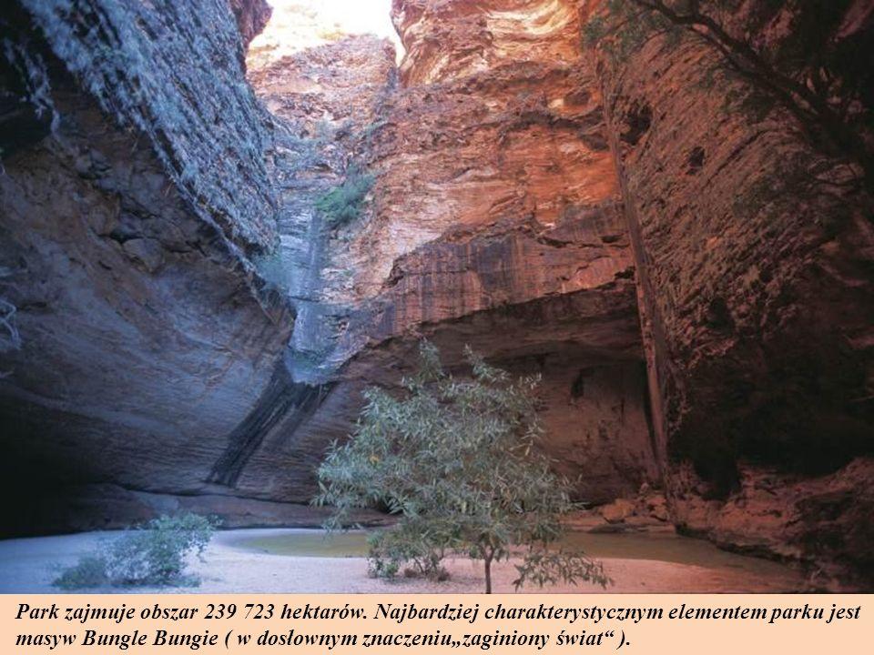 Park zajmuje obszar 239 723 hektarów.