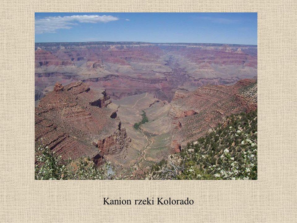 Prezentację przygotowała mgr Katarzyna Kluziak wykorzystując następujące strony internetowe www.wikipedia.pl http://home.agh.edu.pl/