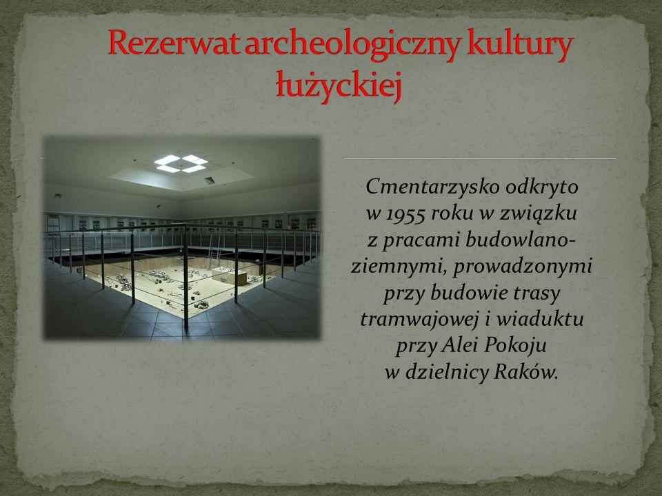 Cmentarzysko odkryto w 1955 roku w związku z pracami budowlano- ziemnymi, prowadzonymi przy budowie trasy tramwajowej i wiaduktu przy Alei Pokoju w dzielnicy Raków.