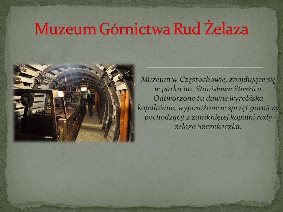 Muzeum w Częstochowie, znajdujące się w parku im.Stanisława Staszica.