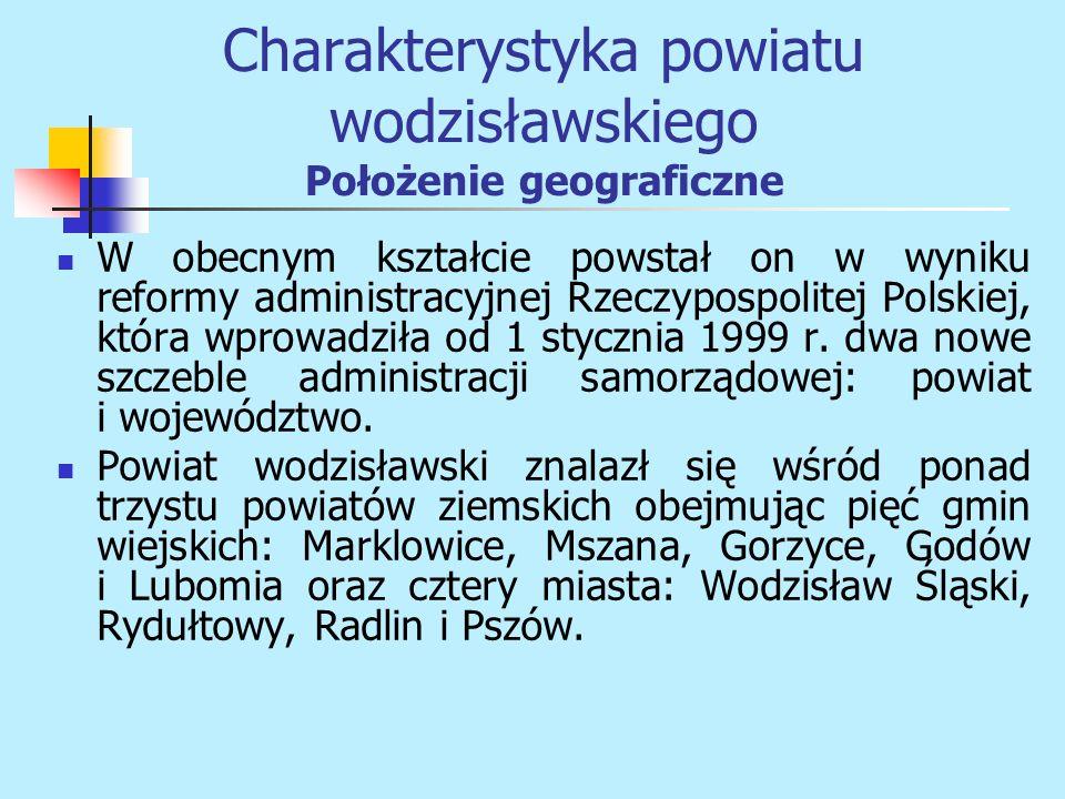 W obecnym kształcie powstał on w wyniku reformy administracyjnej Rzeczypospolitej Polskiej, która wprowadziła od 1 stycznia 1999 r. dwa nowe szczeble