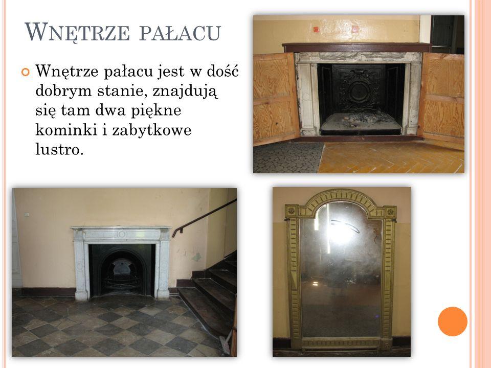 W NĘTRZE PAŁACU Wnętrze pałacu jest w dość dobrym stanie, znajdują się tam dwa piękne kominki i zabytkowe lustro.