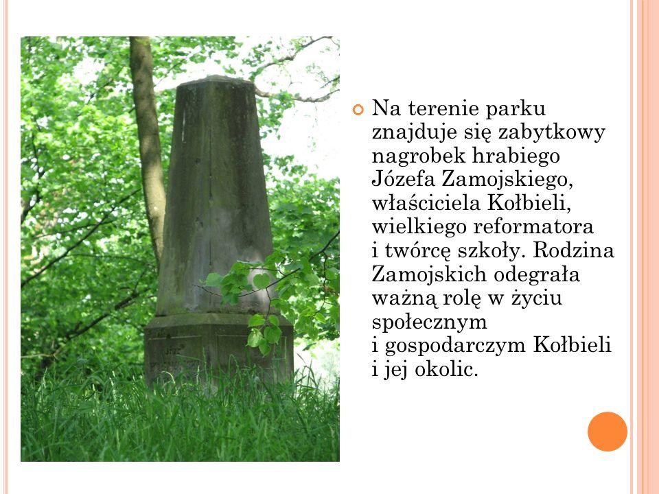 Na terenie parku znajduje się zabytkowy nagrobek hrabiego Józefa Zamojskiego, właściciela Kołbieli, wielkiego reformatora i twórcę szkoły. Rodzina Zam