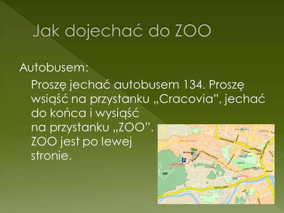 Autobusem: Proszę jechać autobusem 134. Proszę wsiąść na przystanku Cracovia, jechać do końca i wysiąść na przystanku ZOO. ZOO jest po lewej stronie.