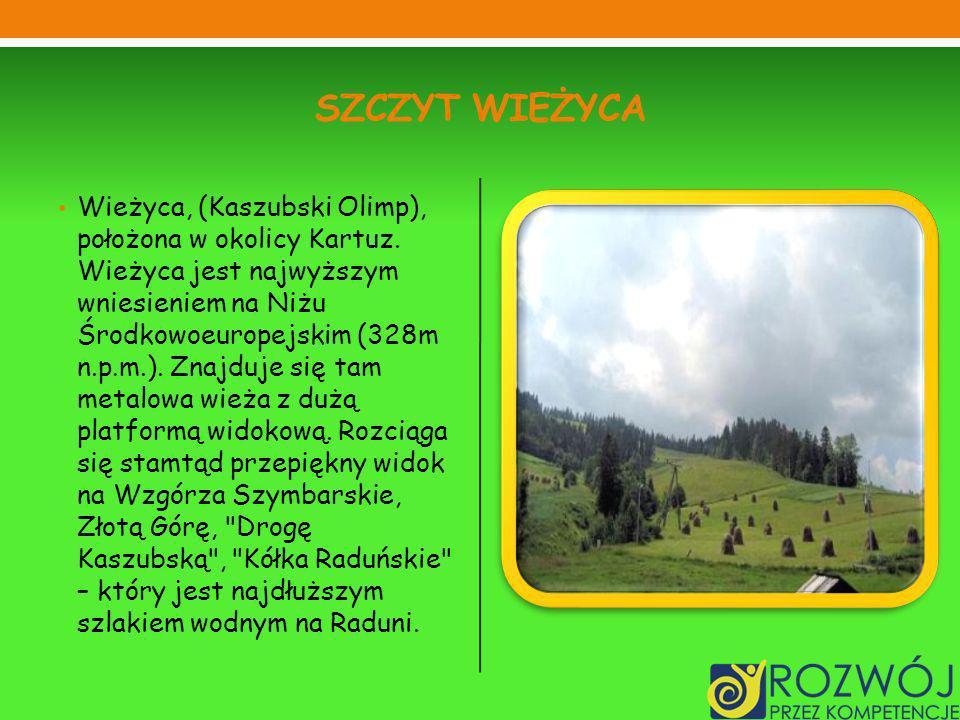 SZCZYT WIEŻYCA Wieżyca, (Kaszubski Olimp), położona w okolicy Kartuz. Wieżyca jest najwyższym wniesieniem na Niżu Środkowoeuropejskim (328m n.p.m.). Z