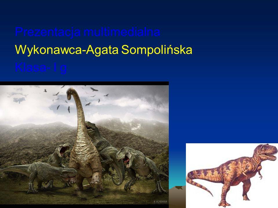 Prezentacja multimedialna Wykonawca-Agata Sompolińska Klasa- I g