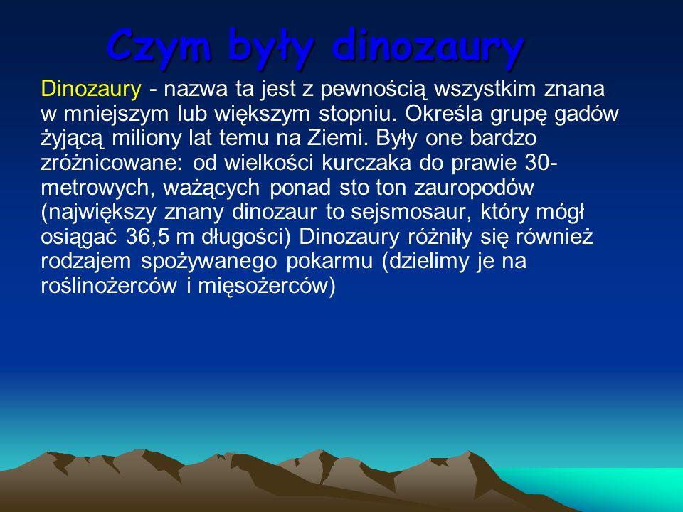 Dinozaury - nazwa ta jest z pewnością wszystkim znana w mniejszym lub większym stopniu. Określa grupę gadów żyjącą miliony lat temu na Ziemi. Były one