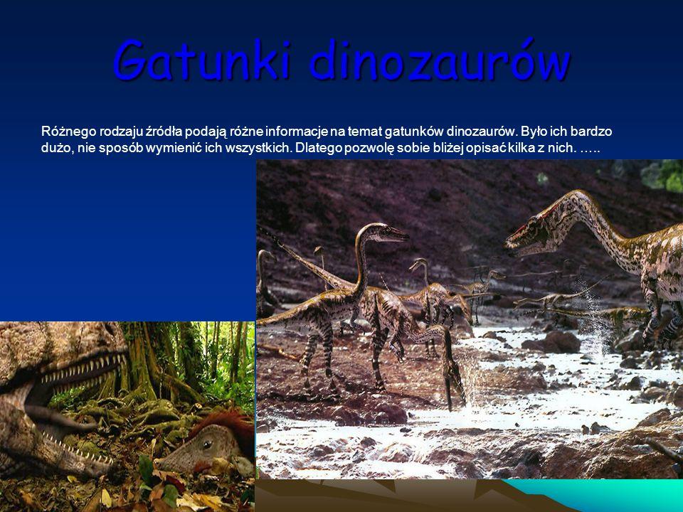 Gatunki dinozaurów Różnego rodzaju źródła podają różne informacje na temat gatunków dinozaurów. Było ich bardzo dużo, nie sposób wymienić ich wszystki