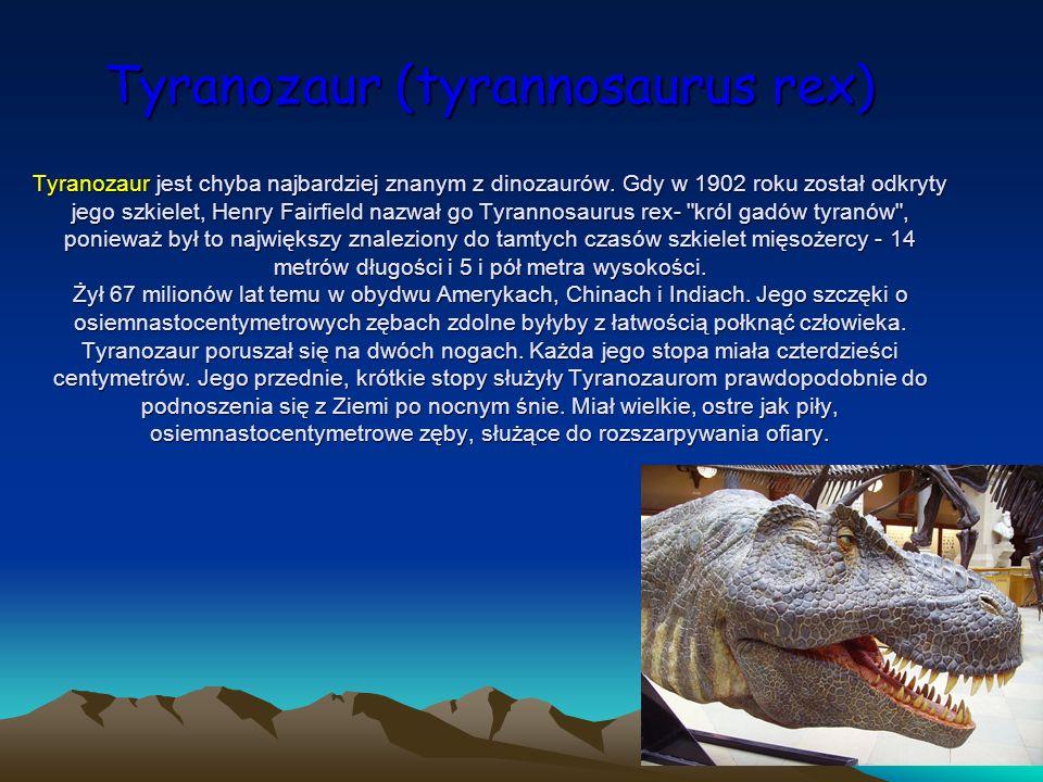 Tyranozaur (tyrannosaurus rex) Tyranozaur jest chyba najbardziej znanym z dinozaurów. Gdy w 1902 roku został odkryty jego szkielet, Henry Fairfield na