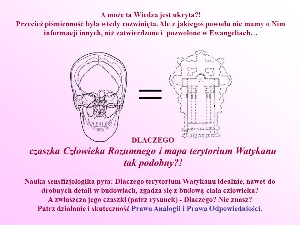 Nauka sensfizjologika pyta: Dlaczego terytorium Watykanu idealnie, nawet do drobnych detali w budowlach, zgadza się z budową ciała człowieka? A zwłasz