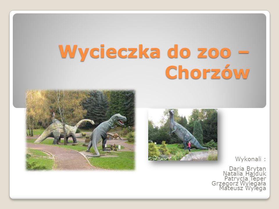 Wycieczka do zoo – Chorzów Wykonali : Daria Brytan Natalia Hajduk Patrycja Teper Grzegorz Wylegała Mateusz Wylega
