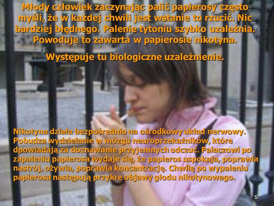 6 PALENIE TYTONIU Źródło: WHO-CINDI, Łódź-Toruń 2000-2002 (N=3218) Najczęściej palą ludzie dojrzali wiekiem (kategorie 35-44 lata oraz 45-54 lata wyczerpywały ponad połowę regularnie palących papierosy); relatywnie rzadziej zaś pacjenci legitymujący się wyższym statusem wykształcenia, oraz wyższymi dochodami.