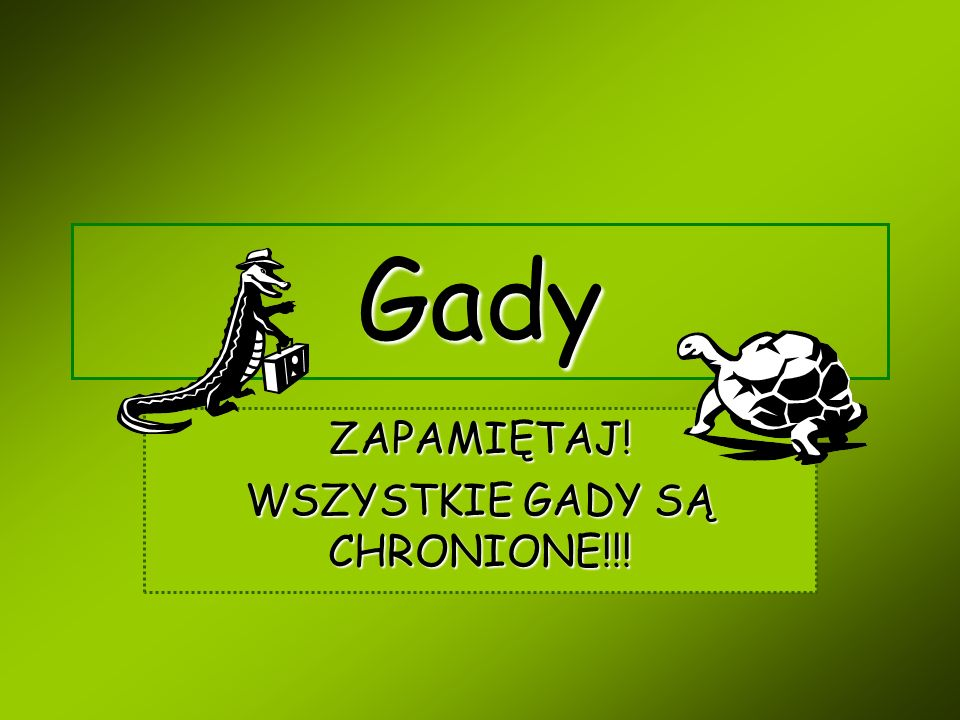 Co to są gady.