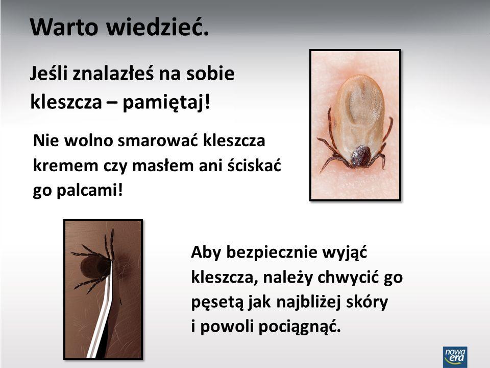 Nie wolno smarować kleszcza kremem czy masłem ani ściskać go palcami! Aby bezpiecznie wyjąć kleszcza, należy chwycić go pęsetą jak najbliżej skóry i p