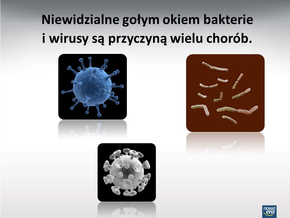 Niewidzialne gołym okiem bakterie i wirusy są przyczyną wielu chorób.