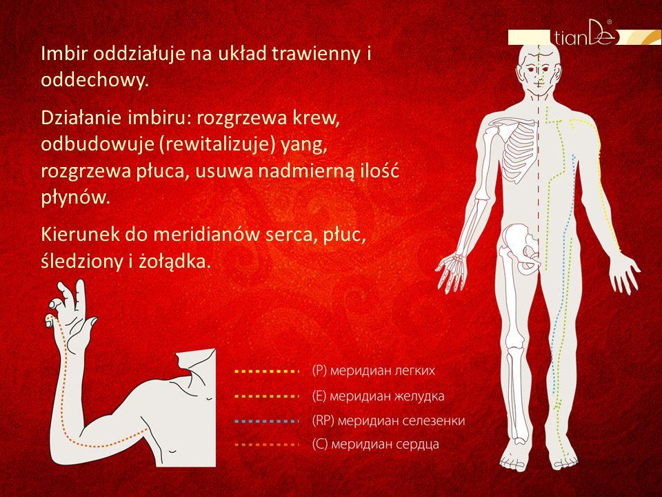 Imbir oddziałuje na układ trawienny i oddechowy. Działanie imbiru: rozgrzewa krew, odbudowuje (rewitalizuje) yang, rozgrzewa płuca, usuwa nadmierną il