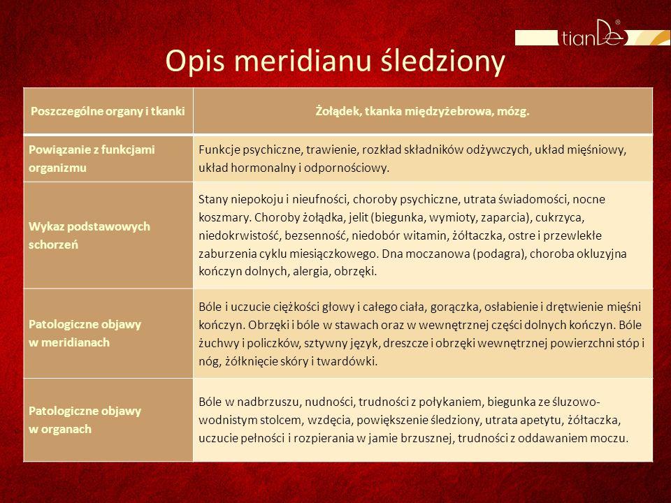 Opis meridianu śledziony Poszczególne organy i tkankiŻołądek, tkanka międzyżebrowa, mózg. Powiązanie z funkcjami organizmu Funkcje psychiczne, trawien