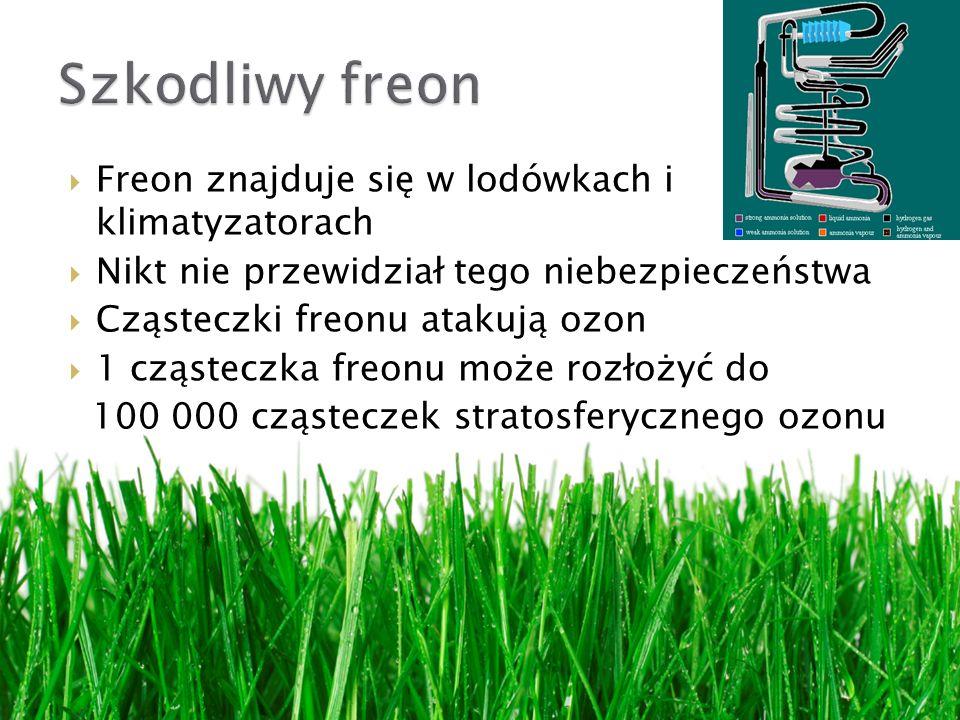 Freon znajduje się w lodówkach i klimatyzatorach Nikt nie przewidział tego niebezpieczeństwa Cząsteczki freonu atakują ozon 1 cząsteczka freonu może rozłożyć do 100 000 cząsteczek stratosferycznego ozonu