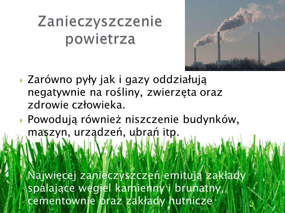 Zarówno pyły jak i gazy oddziałują negatywnie na rośliny, zwierzęta oraz zdrowie człowieka. Powodują również niszczenie budynków, maszyn, urządzeń, ub