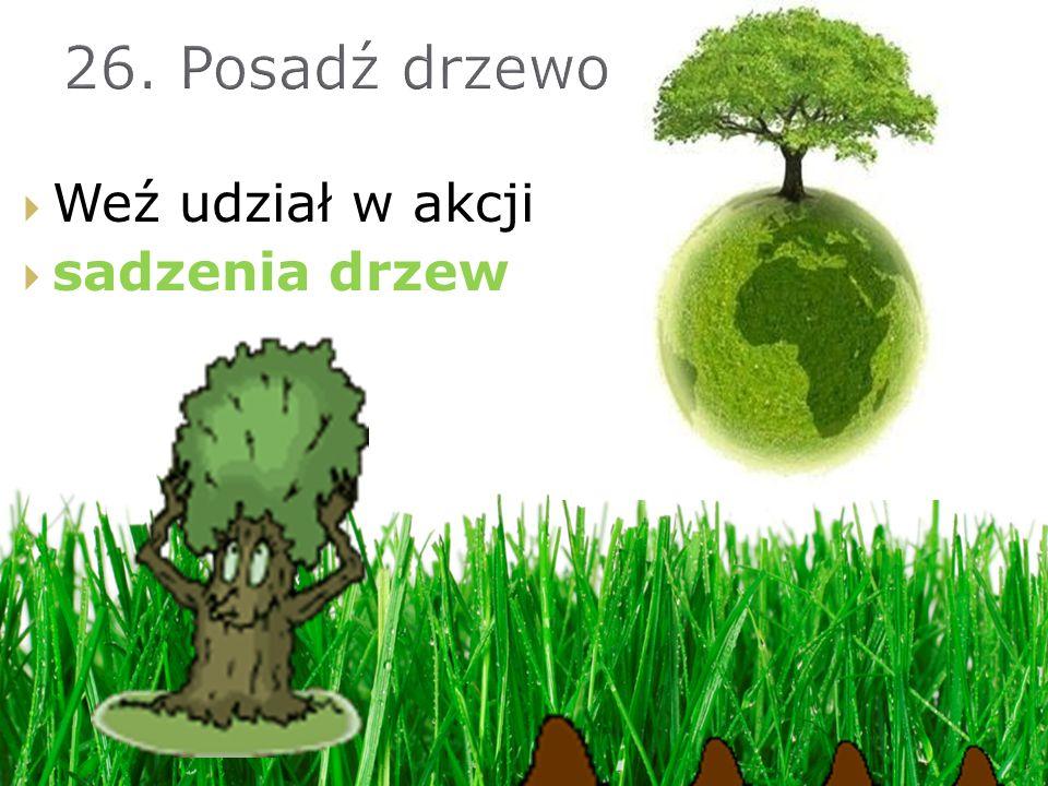 Weź udział w akcji sadzenia drzew