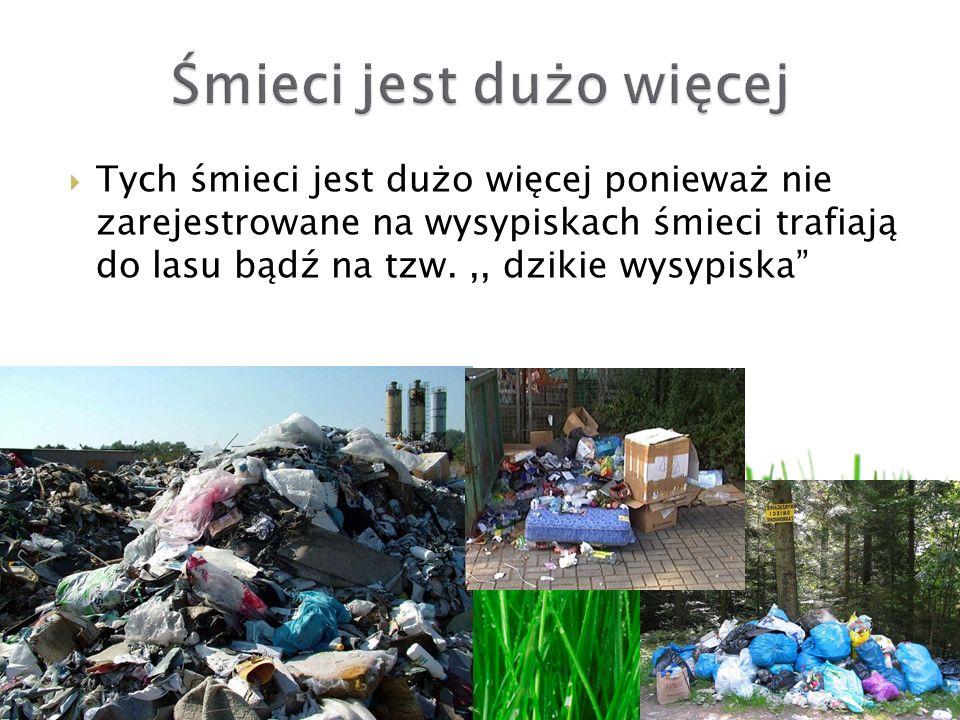 Tych śmieci jest dużo więcej ponieważ nie zarejestrowane na wysypiskach śmieci trafiają do lasu bądź na tzw.,, dzikie wysypiska