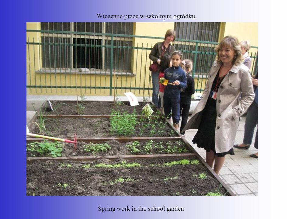 Wiosenne prace w szkolnym ogródku Spring work in the school garden