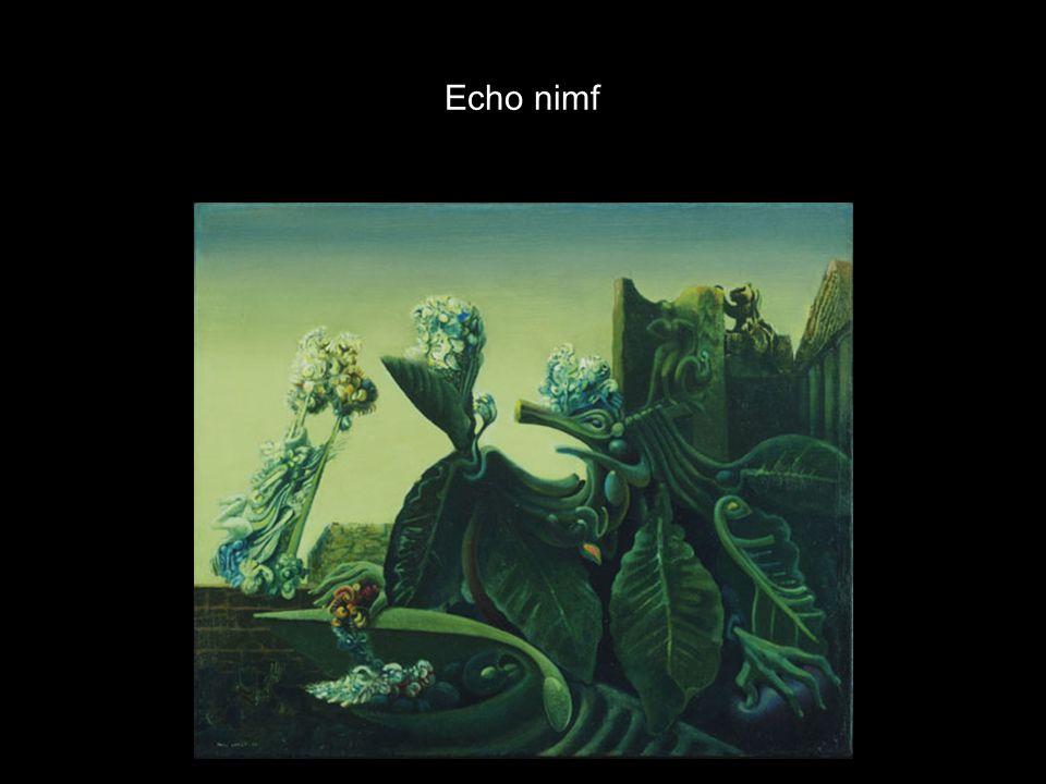 Echo nimf