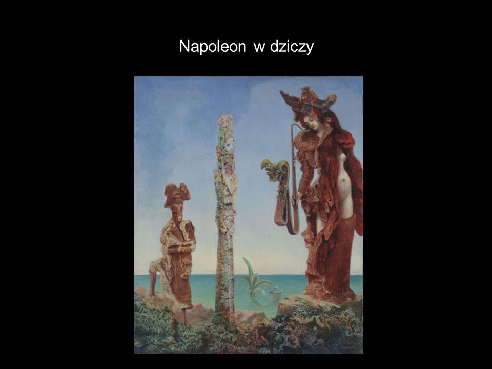 Napoleon w dziczy