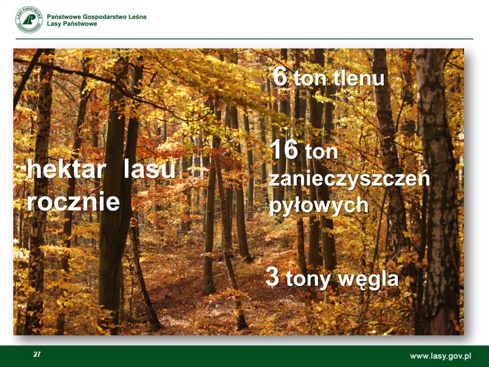 27 16 ton zanieczyszczeńpyłowych 3 tony węgla 6 ton tlenu hektar lasu rocznie