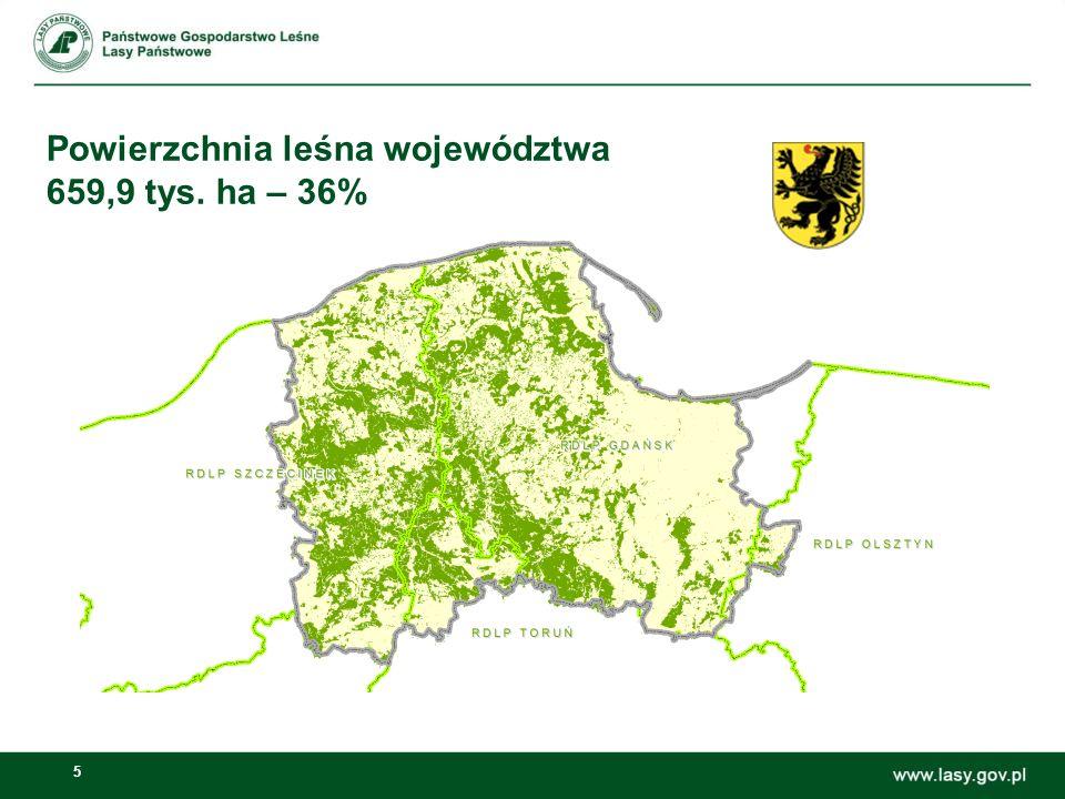 16 Udostępnianie gruntów Lasów Państwowych 5.Przekazanie Art.